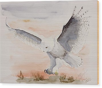 Perfect Landing Wood Print by Joette Snyder