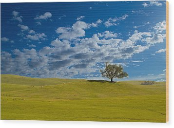 Perfect Landscape Wood Print by Rima Biswas