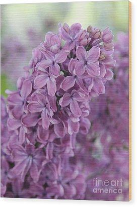 Perfect Lilac Wood Print