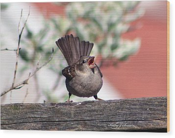 Perfect Pitch And Poise Wood Print by Kathy J Snow