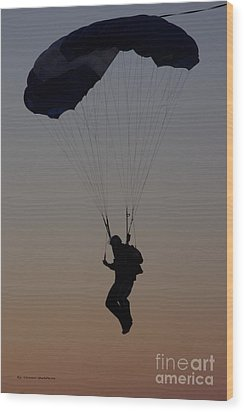 Perfect Sunset Landing Wood Print by Tannis  Baldwin