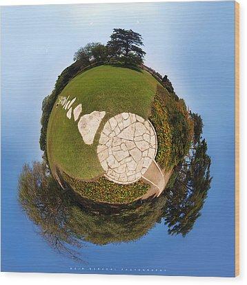 Perfect World Wood Print by Meir Ezrachi