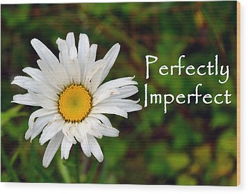 Perfectly Imperfect Daisy Flower Wood Print