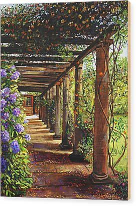 Pergola Walkway Wood Print by David Lloyd Glover