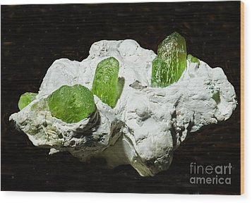 Peridot Crystals Wood Print by Millard H. Sharp