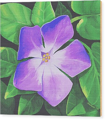 Wood Print featuring the painting Periwinkle by Sophia Schmierer