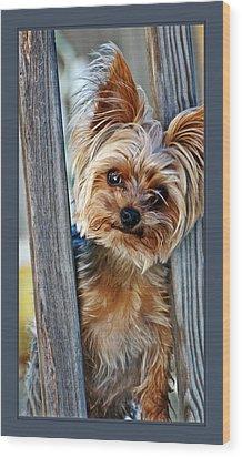 Perky Pup Wood Print