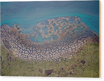 Permafrost Polygons On The Coast Wood Print
