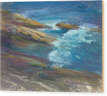 Pemaquid Rocks Wood Print by Greg Barnes
