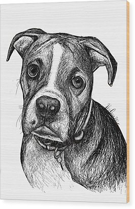 Pet Portraits Boxer Wood Print by Heidi Creed