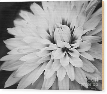Wood Print featuring the photograph Petals by Nancy Dempsey