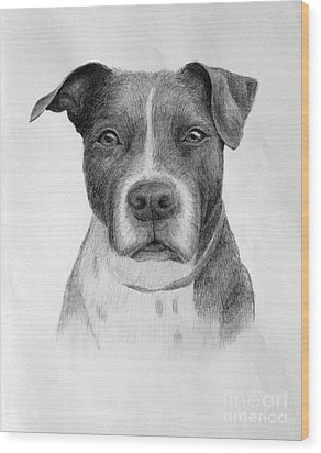 Wood Print featuring the drawing Petey by Denise M Cassano