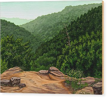 Petit Jean Mountains Wood Print by Dustin Miller