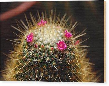 Petite Cactus Wood Print by John Schneider