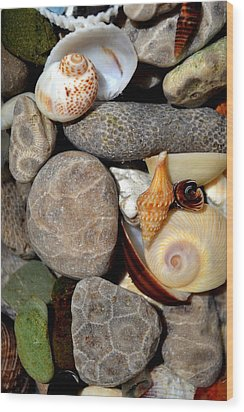 Petoskey Stones Ll Wood Print by Michelle Calkins