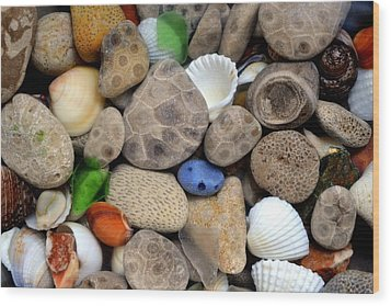 Petoskey Stones Lll Wood Print by Michelle Calkins