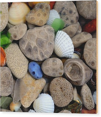 Petoskey Stones V Wood Print