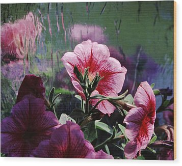 Petunia Reflection Wood Print