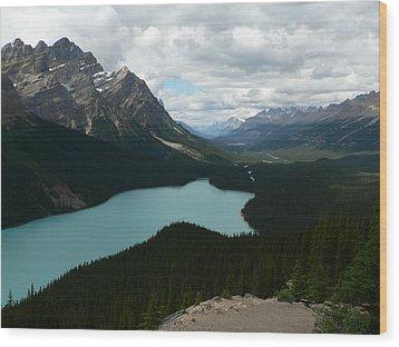 Wood Print featuring the photograph Peyote Lake In Banff Alberta by Laurel Best