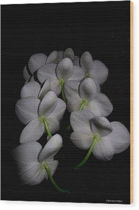 Phalaenopsis Backs Wood Print
