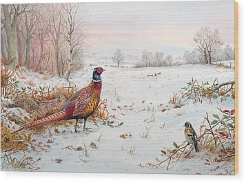 Pheasant And Bramblefinch In The Snow Wood Print by Carl Donner