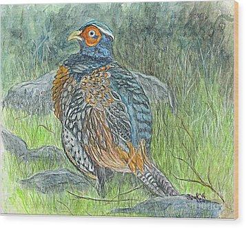 Wood Print featuring the drawing Pheasant Common Male by Carol Wisniewski