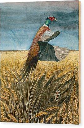 Pheasant Rising Wood Print