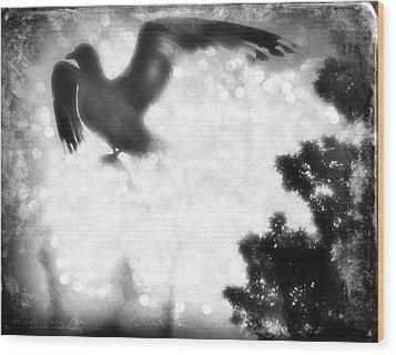 Phoenix IIi Wood Print by Aurelio Zucco