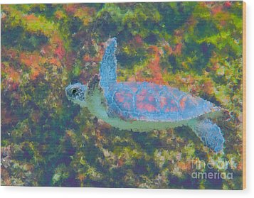 Photo Painting Of Sea Turtle Wood Print by Dan Friend