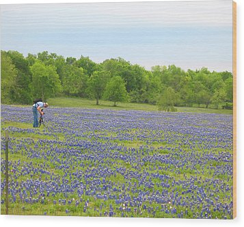 Photographing Texas Bluebonnets Wood Print by Connie Fox