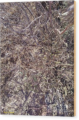 Wood Print featuring the photograph Phylum by Ramona Matei