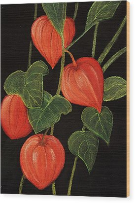 Physalis Wood Print by Anastasiya Malakhova