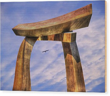 Pi In The Sky Wood Print by Paul Wear