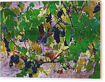 Pick Me Stomp Me I Wood Print by Ken Evans