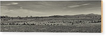 Picketts Charge From Seminary Ridge In Black And White Wood Print by Joshua House