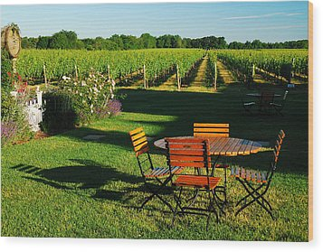 Picnic In The Vineyard Wood Print by James Kirkikis
