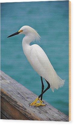 Pier Bird Wood Print