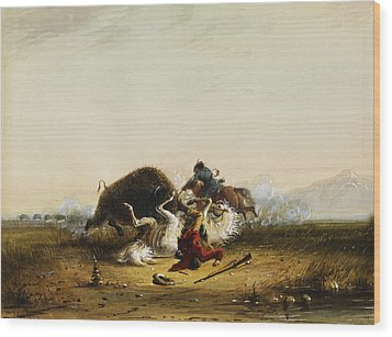 Pierre And The Buffalo Wood Print by Alfred Jacob Miller