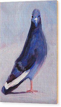 Pigeon Bird Portrait Painting Wood Print