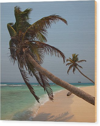 Pigeon Cays Palm Trees Wood Print