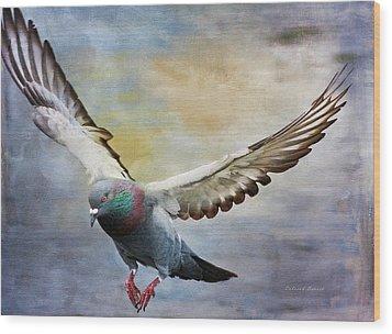 Pigeon On Wing Wood Print by Deborah Benoit