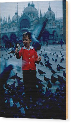 Pigeons Galore 1961 Wood Print by Cumberland Warden