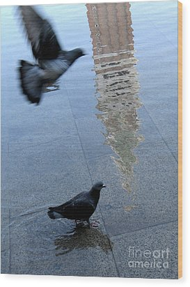 Pigeons In Piazza San Marco. Venice. Italy. Wood Print