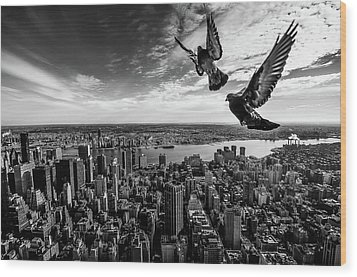 Pigeons On The Empire State Building Wood Print