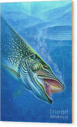 Pike And Ice Fishing Wood Print by Jon Q Wright