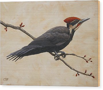 Pileated Woodpecker Wood Print by Crista Forest