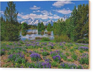 Pilgrim Creek Wildflowers Wood Print
