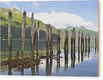 Wood Print featuring the photograph Pilings by Cathy Mahnke