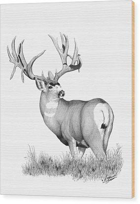 Pilot Monarch Wood Print