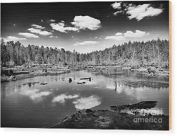 Pine Barrens Lake Wood Print by John Rizzuto